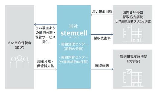 ステムセル研究所